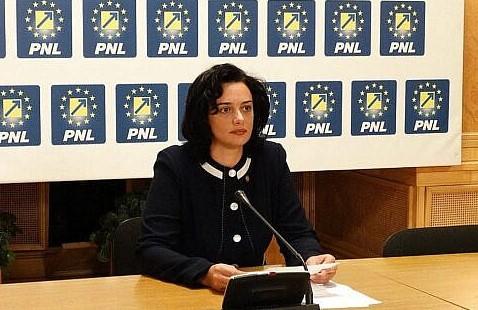 Fădor (PNL): Parlamentul nu trebuie să fie un joc de popice, unde fiecare răstoarnă Guvernul când dorește